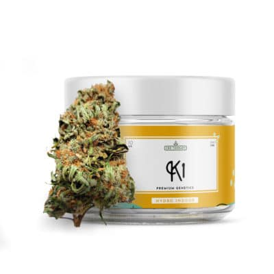 K1 Jar 1